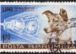 Pes Lajka na rumunské poštovní známce; Foto: Wikimedia Commons
