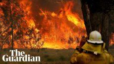 VIDEO: Lesní požáry sužují Austrálii