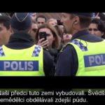 VIDEO: Alternativa pro Švédsko nabízí imigrantům cestu domů
