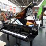 ČÍNA stopla zakázku na česká piana za miliony. Kvůli senátní cestě na Tchaj-wan