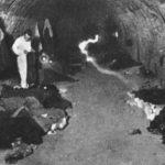 FAKTA: Jak se žilo chudým lidem za první republiky. Bída a špatné hygienické podmínky